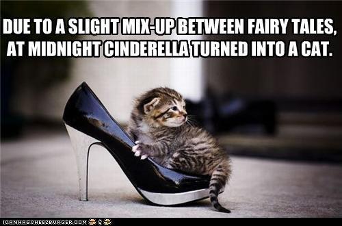 Cinderella Cat